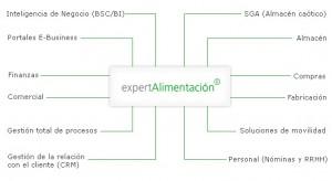 esquema_experta